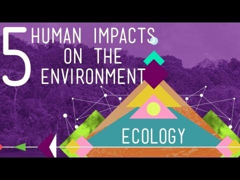 five Human Impacts on the Atmosphere: Crash Program Ecology #ten