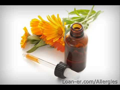 All-natural Allergy Cures That Function!