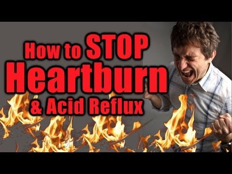 How to Cease Heartburn, Acid Reflux, Digestive Soreness, Leaky Gut, Nutrition | The Real truth Talks